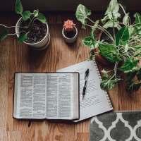 """""""Le Confinement: Emprisonnement ou Temps d'Espérance?"""" - Extraits du journal spirituel de Mary Cotes"""